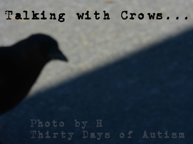 """Talking with Crows"" by H: Photo 1 of 8"